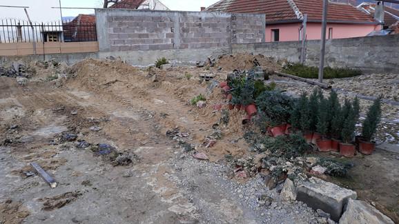 Uništen rasadnik ukrasnog bilja u Aleksincu