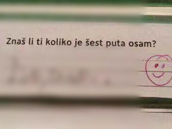 Mali Dalmatinac je dao ovakav odgovor na testu iz matematike. Internet se valja od smeha!