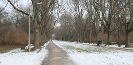 Ciemno i niebezpiecznie w Parku Skaryszewskim