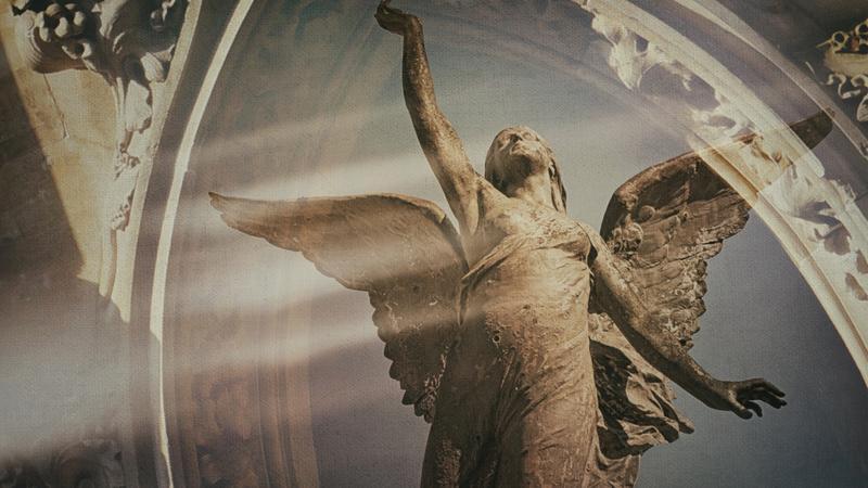 Zakazana historia aniołów