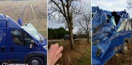 Tragiczny wypadek. Bus uderzył w drzewo