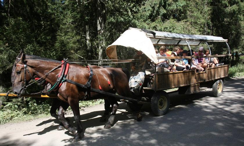 Turyści w Zakopanem.