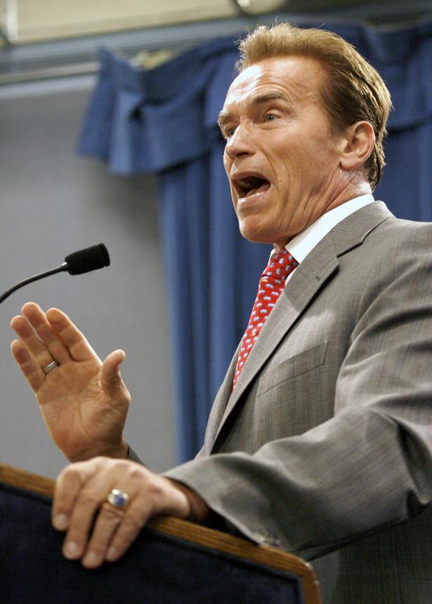 Arnold Schwarzenegger udał się w sobotę do Rosji z delegacją czołowych biznesmenów branży informatycznej ze słynnej Krzemowej Doliny.