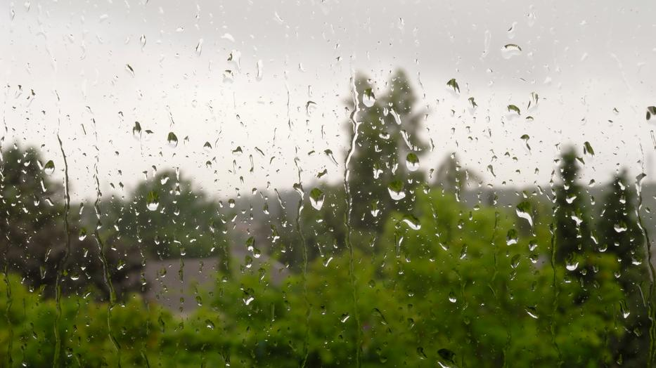 Záporokra, zivatarokra, viharos szélre figyelmeztet az OMSZ / Fotó: Northfoto