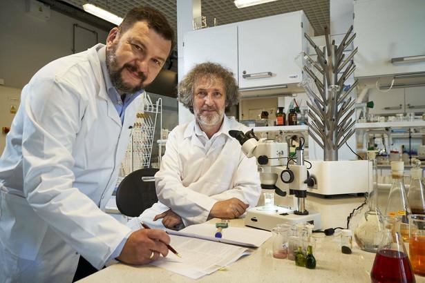 Dr Maciej Hodorowicz i prof. dr hab. Janusz Szklarzewicz - pracujący nad magnetyzmem molekularnym, Zakład Chemii Nieorganicznej Uniwersytet Jagielloński