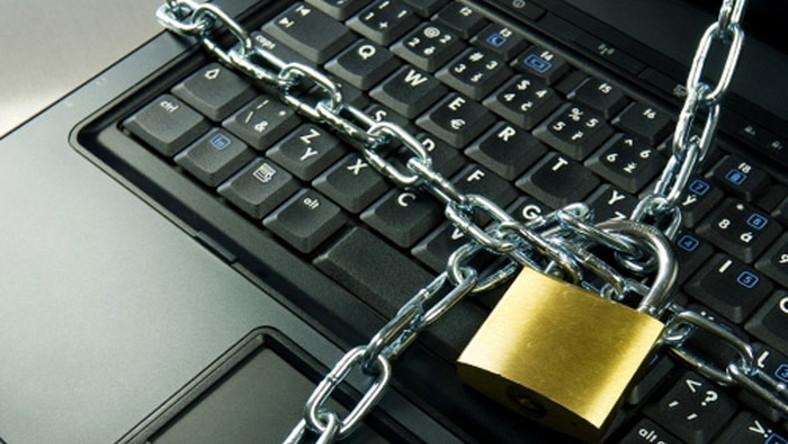 Libertas chce amnestii dla piratów w sieci