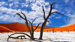 Namibia - afrykańska kraina kontrastów