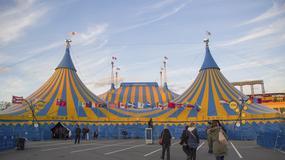 Śmiertelny wypadek podczas występu w Cirque du Soleil na Florydzie