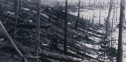 Ten wybuch w jednej chwili powalił 80 milionów drzew. To robota słynnego naukowca
