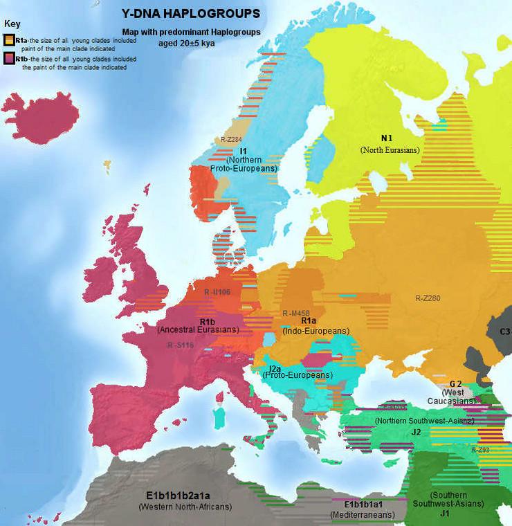 genetska mapa evrope Da se mapa Evrope temelji na jednoj stvari Hrvati, Srbi i Bosanci  genetska mapa evrope