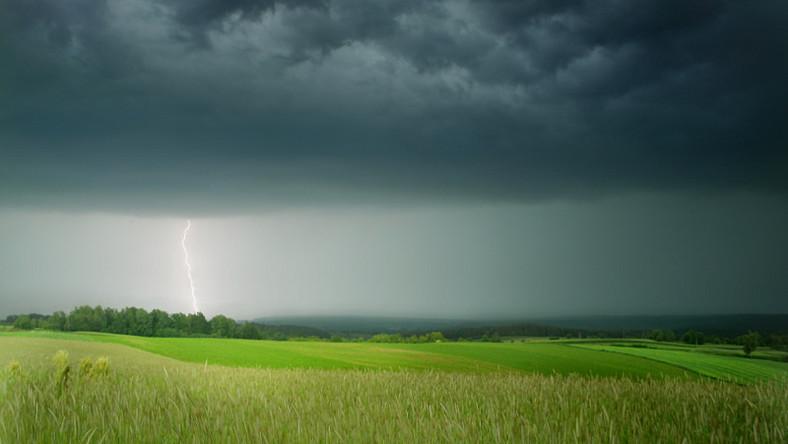 Pole, łąka, burza. Fot. Fotolia