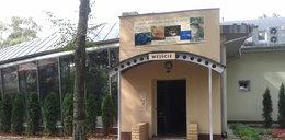 Nowoczesny pawilon w zoo. FILM