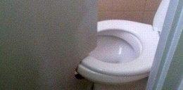 Jak ludzie mają w toaletach? ZDJĘCIA