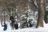 SREDA GALERIJA Sneg, Zima, Novi Sad