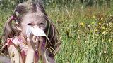 Jesteś alergikiem? Mamy złą wiadomość