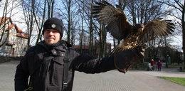 Mój ptak zarabia 27,5 tys. zł