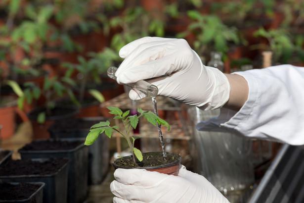 Ministerstwo Rolnictwa i Rozwoju Wsi przedstawiło dwa projekty ustaw zmieniające organizację pracy Państwowej Inspekcji Ochrony Roślin i Nasiennictwa oraz zasady ochrony upraw.