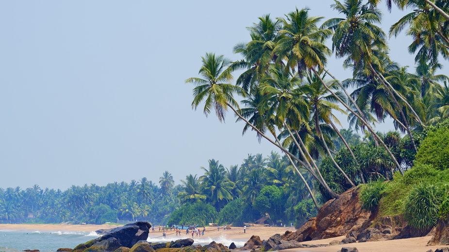 Egzotyczne wakacje w krainie herbaty. Sri Lanka zachwyca malowniczymi krajobrazami