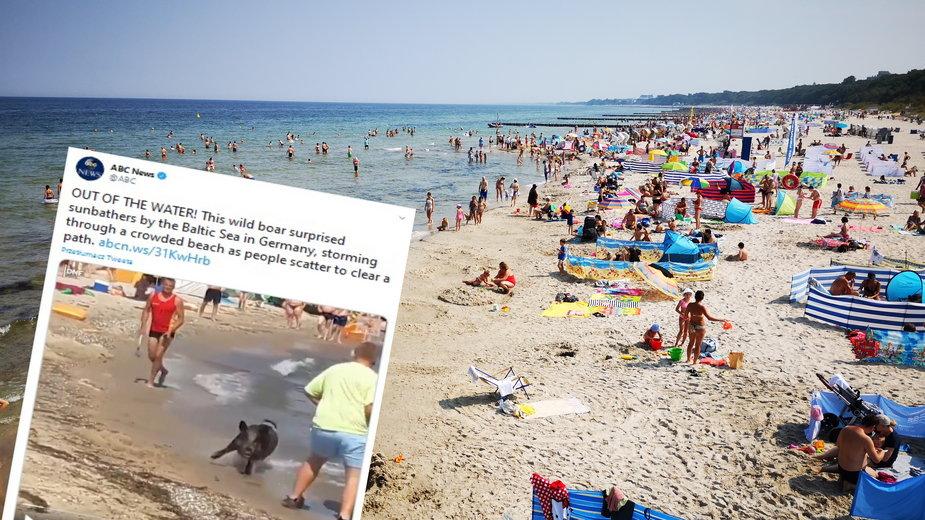Plaża nad Bałtykiem (Zdjęcie ilustracyjne)