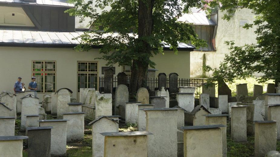 Drzewo rosnące nad grobem rabina Mojżesze Isserlesa ReMU. Cmentarz żydowski Remuh w Krakowie.