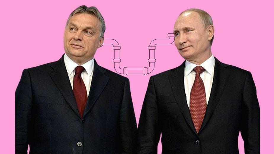 """""""Orban z Putinem wbijają nóż w plecy Polsce i Ukrainie"""""""