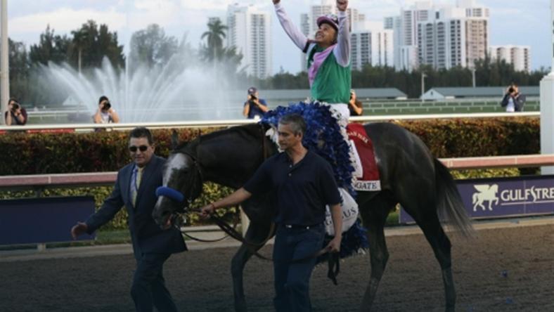Najlepszy koń wyścigowy świata 2016 roku