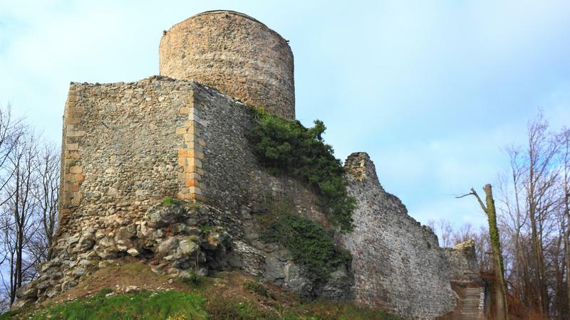 Zamek, Wleń