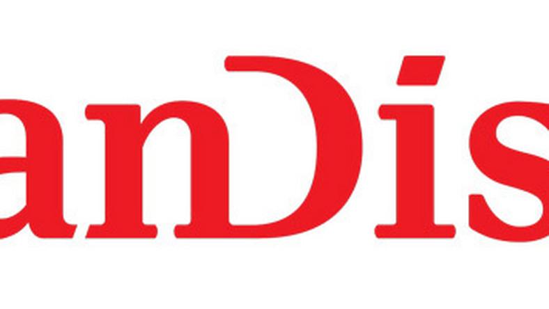 Sandisk Eye Fi 4gb Szybki Test Karty Sdhc Z Modulem Wi Fi