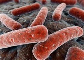 streptococcus ízületi fájdalom