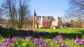 Park Mużakowski - niezwykły park pałacowy z listy UNESCO