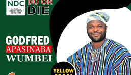 Godfred Apasinaba Wumbei