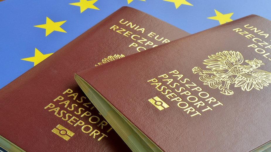 Paszport -  Pio Si/stock.adobe.com