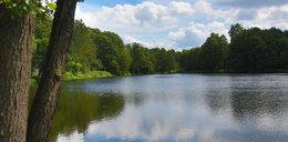Otworzą kąpielisko na Stawach Stefańskiego