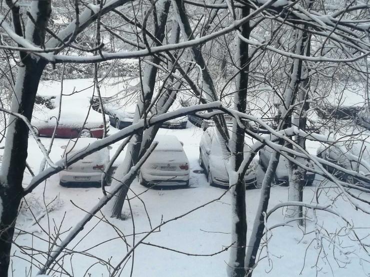 Sneg Beograd