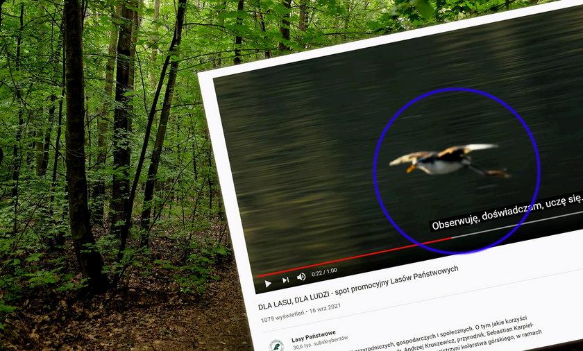 W klipie, który miał promować polską przyrodę, pojawił się dość egzotyczny bohater!