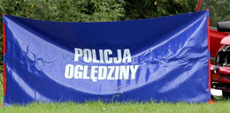 Tragiczny wypadek pod Włocławkiem. Kierowca uderzył w dzika, obejrzał auto i po chwili zmarł