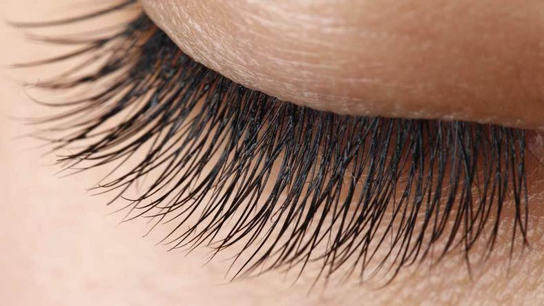 Beauty Tips 5 Home Remedies To Grow Strong Eyelashes Pulse Ghana