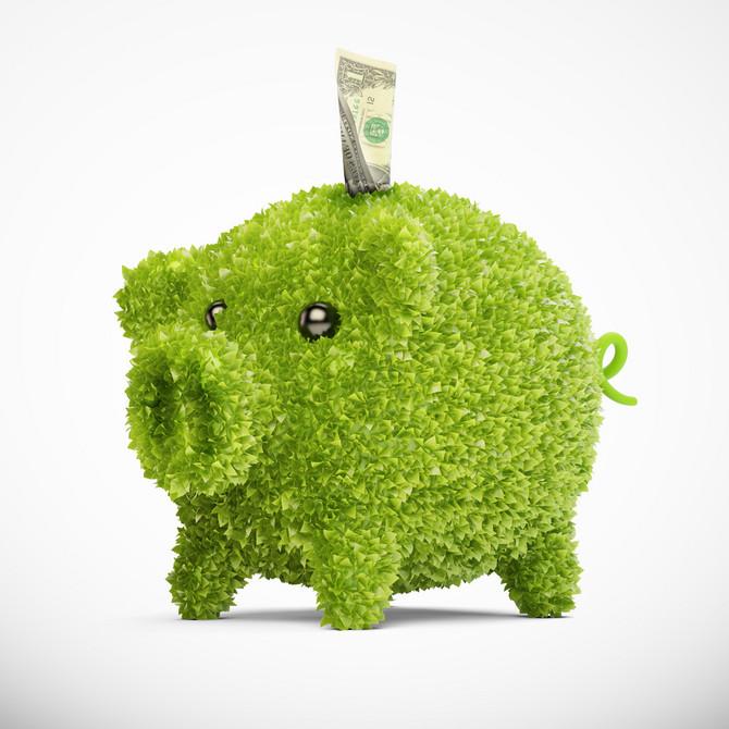 Brinite o kućnom budžetu, ali i okolini