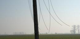 Kradli kable linii energetycznych