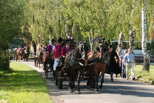 Biskupizna, Festiwal Tradycji i Folkloru w Domachowie