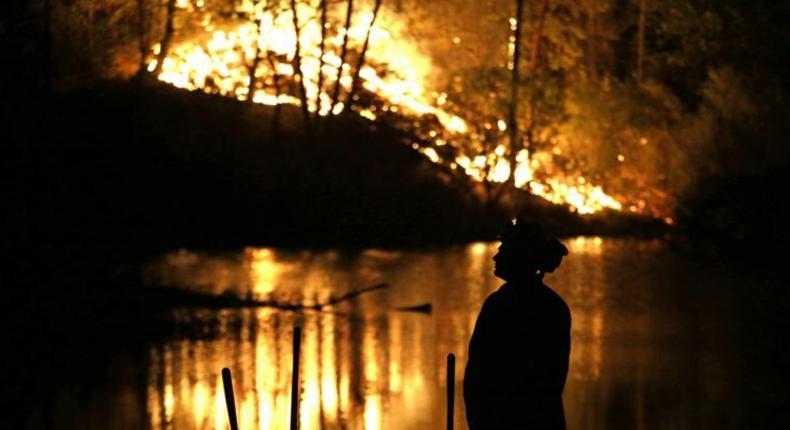 Australia's bushfires leave trail of death and destruction