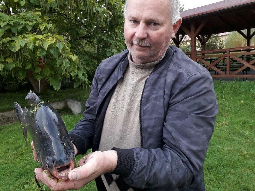 """Egzotyczna """"bestia"""" w Jeziorze Zegrzyńskim. Zaplątała się w sieci wędkarza"""