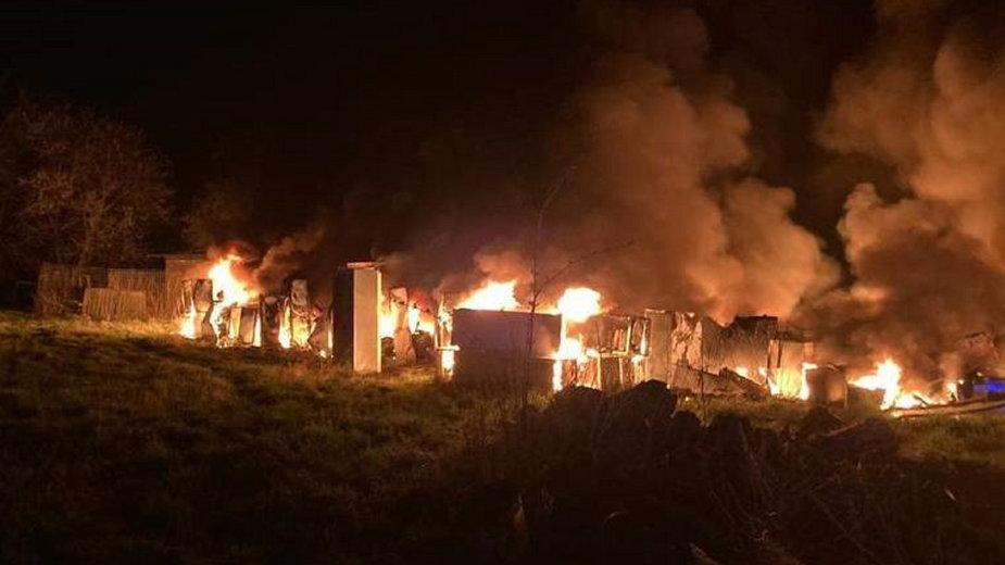 Pożar sprzętu agd fot. KP PSP w Sulęcinie