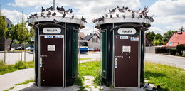 Nowoczesne toalety nie działają