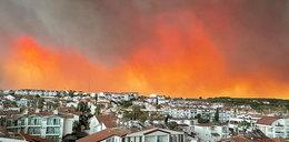 """""""Zbocza gór usłane ciałami zwierząt"""". Polka mieszkająca w Turcji o pożarach: tylko Palec Boży może pomóc"""