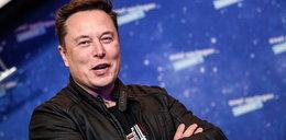 Strasznie drogi internet od Elona Muska. Cena zwala z nóg, ale ma jedną zaletę