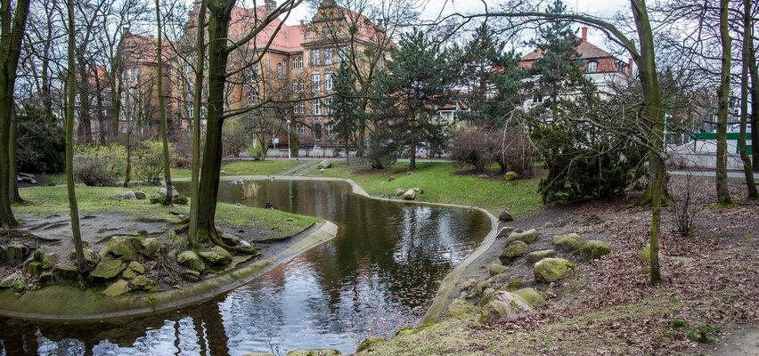 Zwłoki przed parkiem Wilsona w Poznaniu. Wiadomo, co się stało
