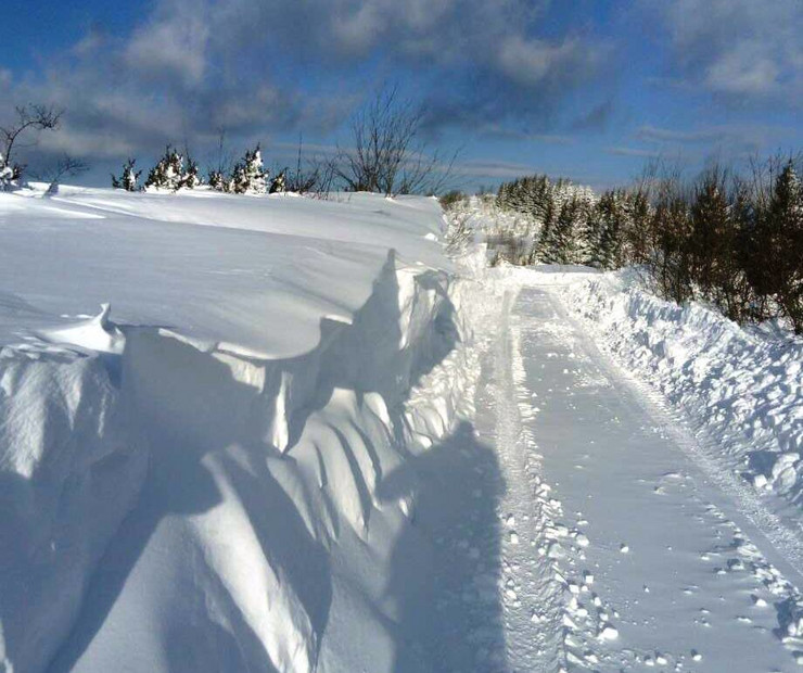 Sneg na Goliji