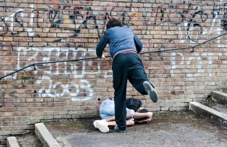 Vrsnjacko nasilje