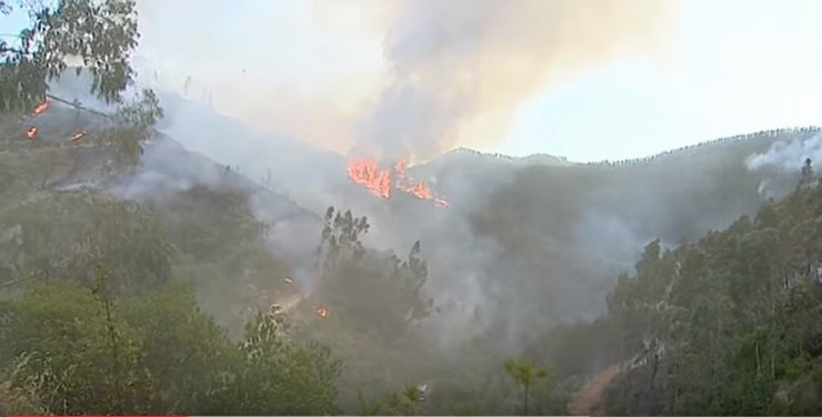 požar portugal
